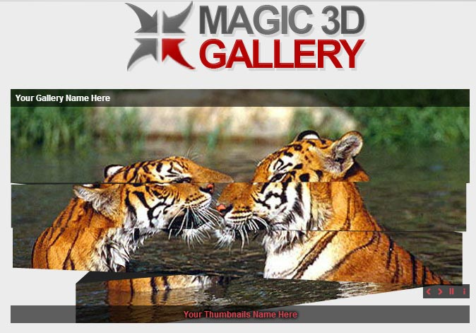 Magic-3d-Gallery1