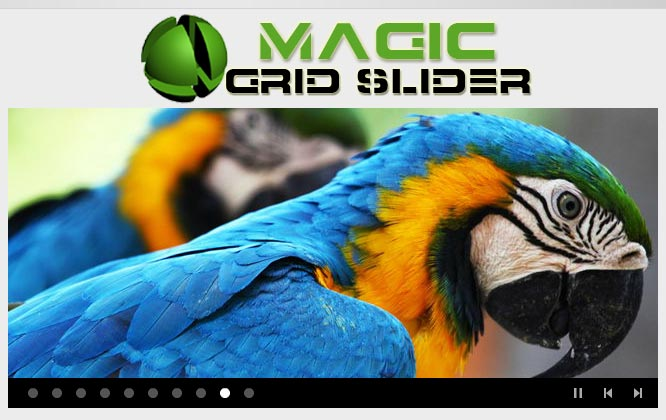 Magic-Grid-Slider1