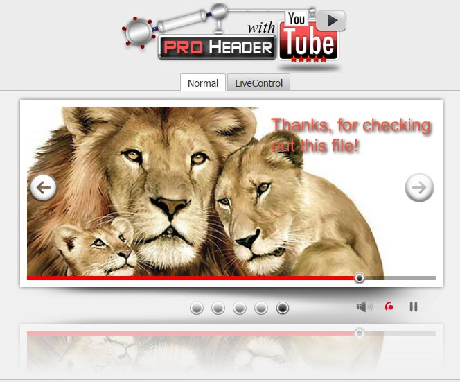 PRO-Header-with-YouTube1